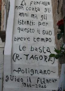 Italy2012 127