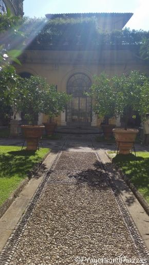 Sunshine, Shadows, Lemon Trees, Medici
